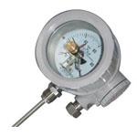 WSSX防爆双金属温度计